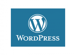Why we love WordPress (and recommend it for business websites)